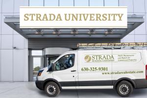 Introducing Strada University